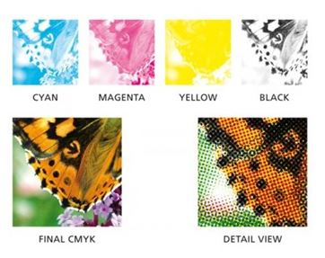 CMYK, the building blocks of color printing.